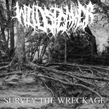 Wildspeaker – Survey The Wreckage
